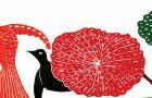 Kertenkele, gül ve güvercin